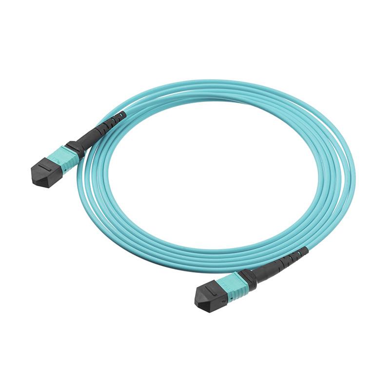MPO Fiber Cable Video Show